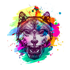 Wolf head with creative abstract element on white background