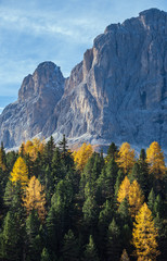 Autumn alpine Dolomites mountain scene, Sudtirol, Italy. Peaceful view near Gardena and Sella Pass. Picturesque traveling, seasonal, nature and countryside beauty concept scene.