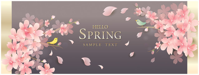 Fotorollo Grau 春の花 桜 spring cherry blossom background