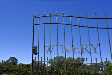 Winery Gate opens into a vineyard under clear blue sky
