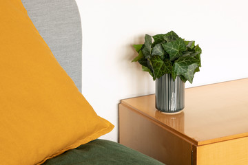 Aluminium Prints Bonsai Home interior with green leaves decoration. Bouquet of fresh ivy leaves standing on wooden sideboard. Simple green fresh home floral decoration close up.