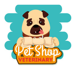 pet shop veterinary with little dog vector illustration design
