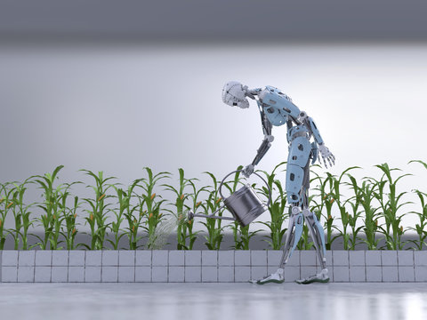 robot watering plants in the greenhouse