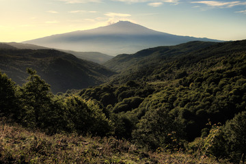 Etna Mount From Forest Of Nebrodi Park, Sicily
