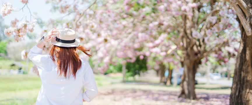 spring season with full bloom pink flower travel concept from backside of beauty asian woman with wear summer hat enjoy with sight seeing sakura or cherry blossom with soft focus flower background