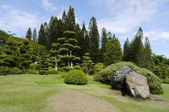 Santo Domingo Japanischer Garten im Botanischen Garten