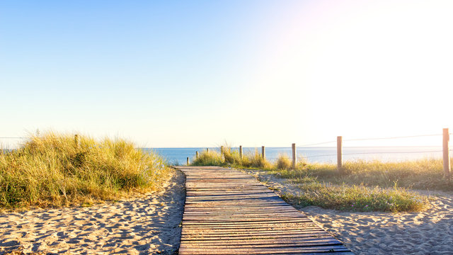 Wooden path in the middle of the dunes leading to the beach surrounded by stakes on the island of Noirmoutier, France