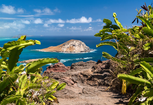 Makapuu Lookout, Oahu Hawaii