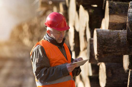 Lumber engineer working on tablet