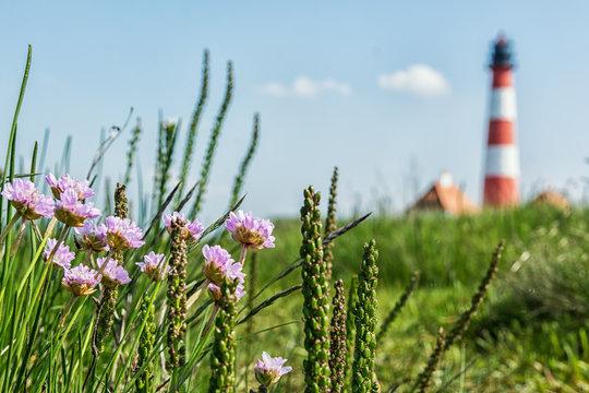 Leuchtturm Westerheversand an der Nordseeküste