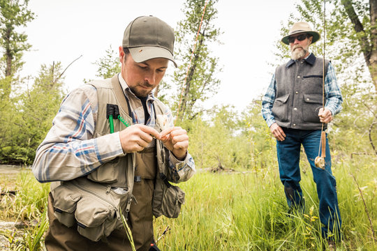 Fly fisherman picking new fly out of his fly box. Red Lodge, Montana, USA