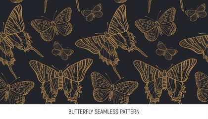 Tuinposter Vlinders in Grunge Butterfly seamless pattern, hand drawn vector illustration. Summer design. Creative background.