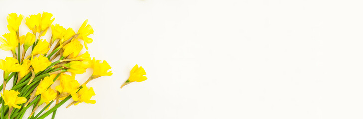 a bouquet of easter bells, daffodils flowers cut out on white background for copy text flowers bouquet yellow green fresh spring