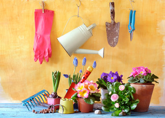 spring flowers and garden tools, gardening, planting for springtime