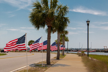row of flags with palmetto trees