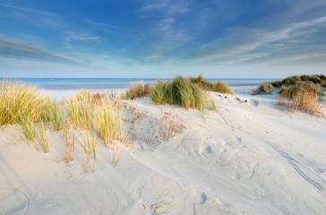 dunes, sand, beach, North sea in sunshine