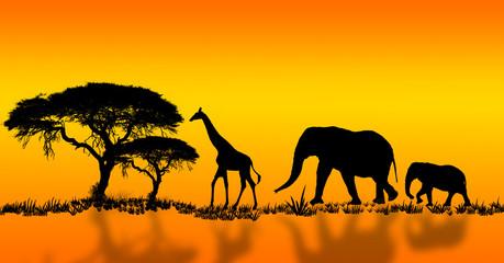 Afrikanische Idylle mit Elefant und Giraffe