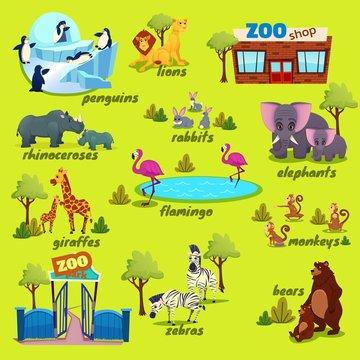 Zoo Map with Giraffe, Lions, Monkey, Zebra, Rhinoceroses, Rabbits, Elephant, Bear, Penguins, Monkey, Zoo Shop. Nature Infographics Elements with Funny Animals in Park. Cartoon Flat Vector Illustration
