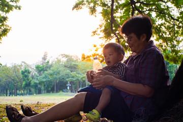 Senior elderly Grandmother Playing with grandson baby boy under tree in city park sunset light