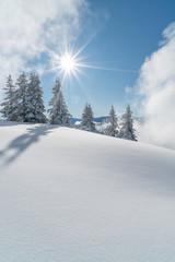 Wall Mural - Verschneite Winterlandschaft in den Alpen