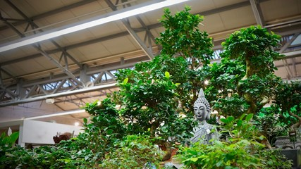 Beautiful buddha statue in bonsai forrest. Enlightenment concept.