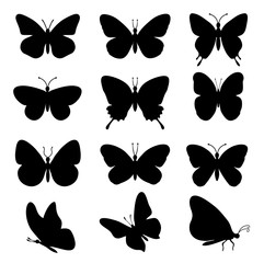 Butterflies silhouettes. spring butterfly silhouette collection isolated on white background. Vector butterfly set.