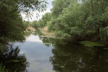 Here it is a still waters.
