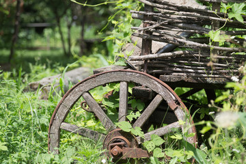Big old wooden wheel of the ancient cart.