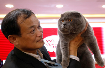 Dinh Chau Hieu Tam holds his cat during the Vietnam's first cat show in Hanoi