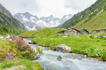 Fototapete - Almhütten mit Gebirgsfluß im Zillertal und Gletscher im Hintergrund