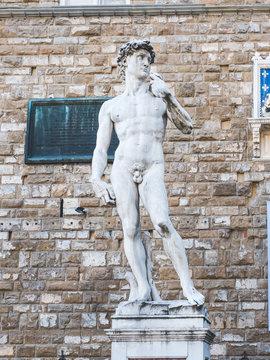 Replica Of Statue of David of Michelangelo