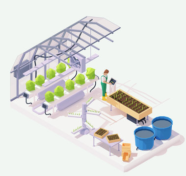 Vector isometric modern agricultural greenhouse cross-section illustration. Hydroponics and aeroponics process of growing plants, smart garden beds, pond, farmer operating smart greenhouse system