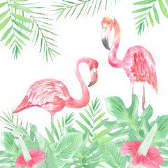 Watercolor illustration of picturesque pink flamingos in the tropics. Perfect for design in printing, textiles, souvenirs and other creative fields.