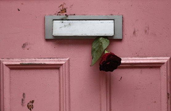 A rose is placed in the letterbox of British television presenter Caroline Flack's old house in Islington, London