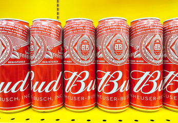 Bud beer in metal cans ready for sale