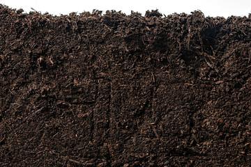 Fototapeta Soil or dirt section isolated on white background obraz