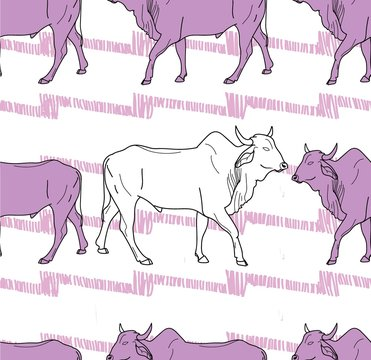 Seamless pattern with cows. Zebu cow, Indian cow. Indian. ethnic background. Background for text.