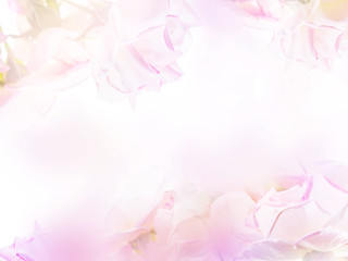 Wall Mural - Abstract floral backdrop of purple flowers with soft style.