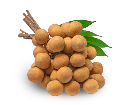 Longan on White Background With clipping path, fresh longan isolated on white background. full depth of field