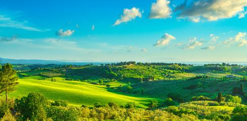 Maremma countryside, Bibbona and Casale Marittimo sunset landscape. Tuscany, Italy.