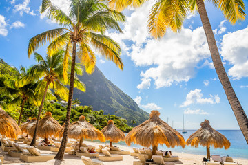 Caribbean beach with palms and straw umrellas on the shore with Gros Piton mountain in the background, Sugar beach, Saint  Lucia