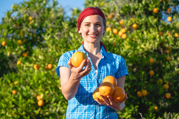 Tuinposter Op straat Farmer woman harvesting oranges in her orchard