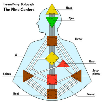 Human Design Chart, or BodyGraph, with the nine colored energy centers, vector illustration.