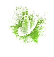 Fotorolgordijn Vlinders in Grunge color paint splashes with butterfly isolated on a white background. print for the designer