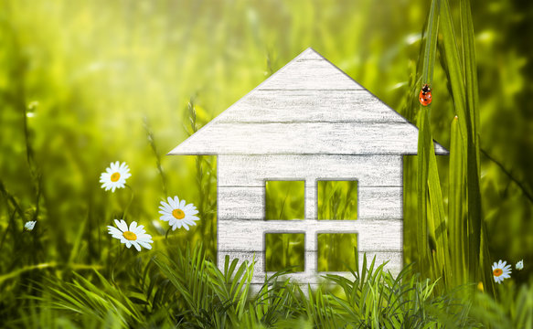 Eco friendly wooden house model in green grass, daisies chamomile flower, ladybug sitting on leaf, ecological sustainable lifestyle, life harmony. Buying or selling real estate, investment concept.