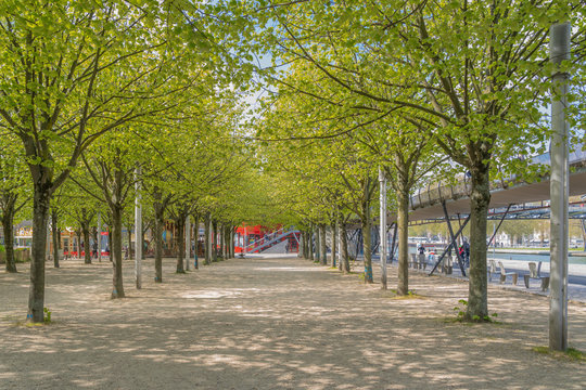 Paris, France - 04 14 2019: Canal Lourcq. Alley of trees at sunrise