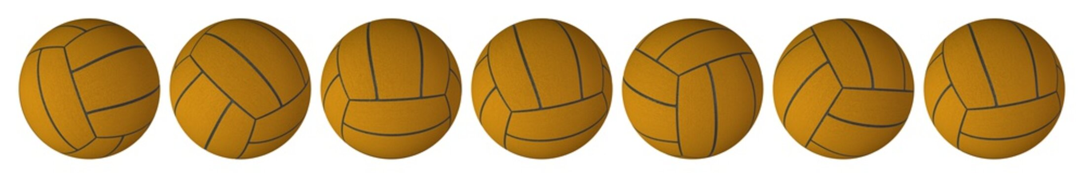 Water Polo Ball Various Positions
