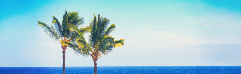 Foto op Canvas Palm boom Beach travel Summer banner background of blue ocean and palm trees panorama, tropical Caribbean travel destination. Horizontal copy space header.