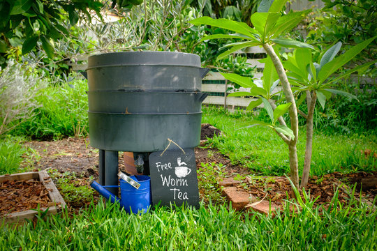 worm farm compost bin in organic Australian garden with sign for Free Worm Tea, sustainable living and zero waste lifestyle