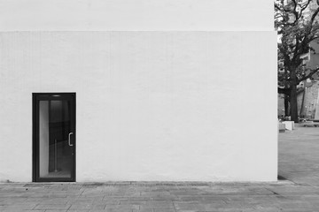Door on white wall with space for your content Fotomurales